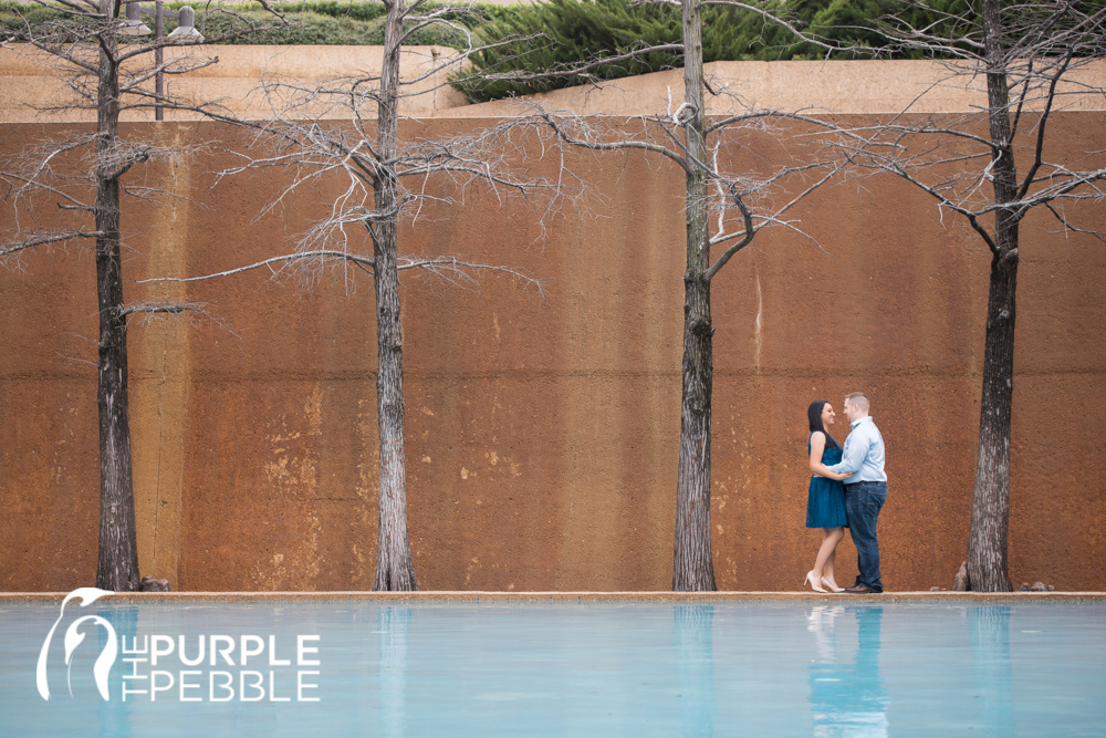 Fort worth water gardens engagements lisa jared - Fort worth water gardens wedding ...