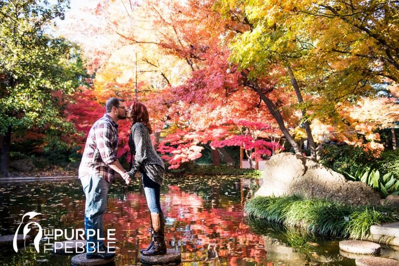 Great Japanese Garden Fall Engagement Ideas   The Purple Pebble   Dallas Fort  Worth Wedding Photographers