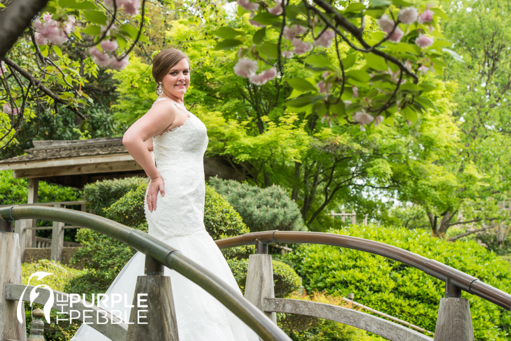 Bridal Photography Moon Bridge Japanese Garden   The Purple Pebble   Dallas  Fort Worth Wedding Photographers