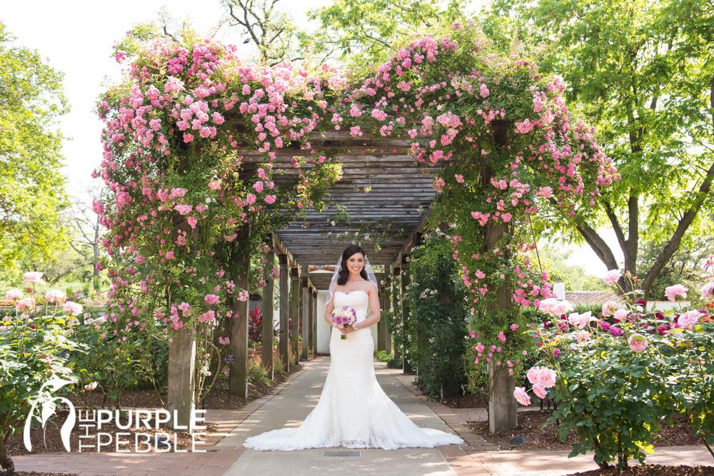 Wedding Gowns Dallas Fort Worth : Bliss bridal salon camp bowie blvd fort worth